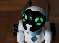 Gucci and AI Pet