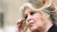 Brigitte Bardot still Defends the Cause of Animals